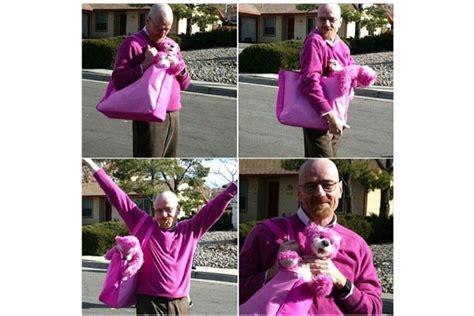 bryan cranston pink walter white de breaking bad 233 o verdadeiro pinkman