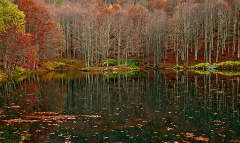 giardino autunno giardino d autunno juzaphoto