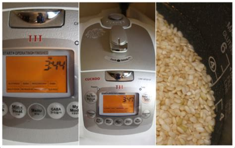 Galanz Electric Multi Rice always how to use galanz rice cooker electric multi stew