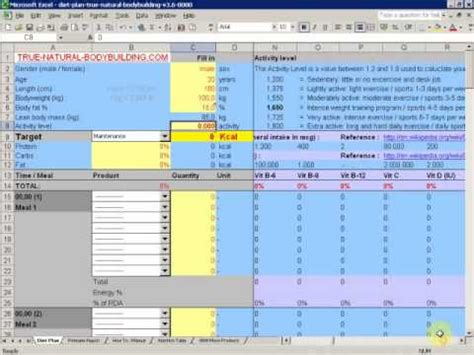 how to make a diet plan with excel: demo video part 1