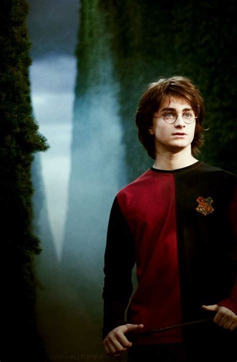 harry potter and the goblet of series 4 52 best images about triwizard tournament on