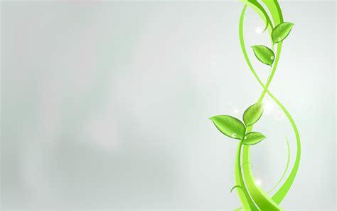 plant wallpaper plant wallpaper 1680x1050 80899