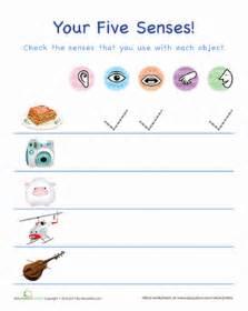 the five senses! | worksheet | education.com