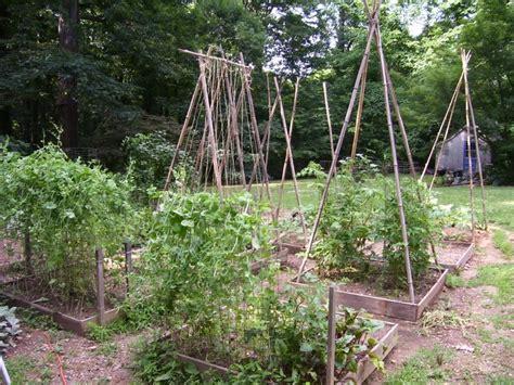 Bamboo Trellis Bamboo Trellis At Home With Nature
