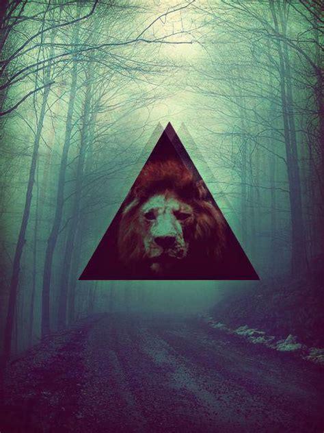 imagenes hipster triangulo triangulo hipster taringa