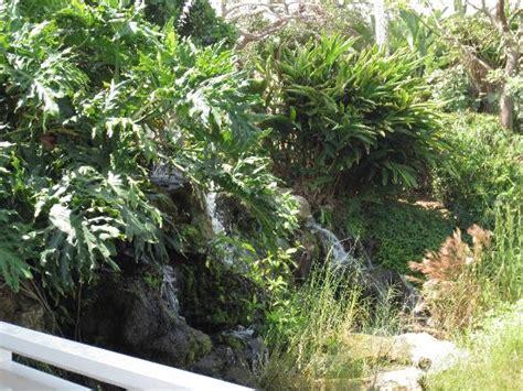 Sanibel Cottage Resort by Sanibel Cottages Resort Updated 2016 Cottage Reviews