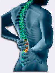 corso di laurea in fisioterapia senza test d ingresso corso di fisioterapista facolt 224 di fisioterapia privato