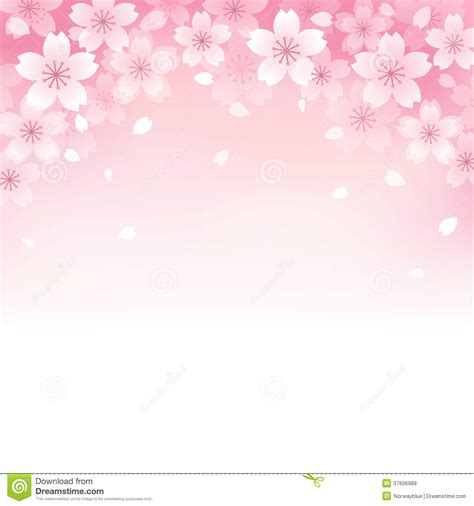 The House Designers House Plans by Beautiful Cherry Blossom Background Royalty Free Stock