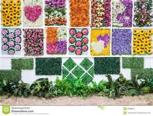 vertical flower garden stock photography image 30668812