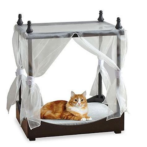cat canopy bed pet canopy bed in black own this bed bath beyond