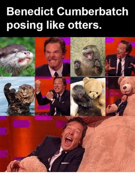 Cumberbatch Otter Meme - 25 best memes about otters otters memes
