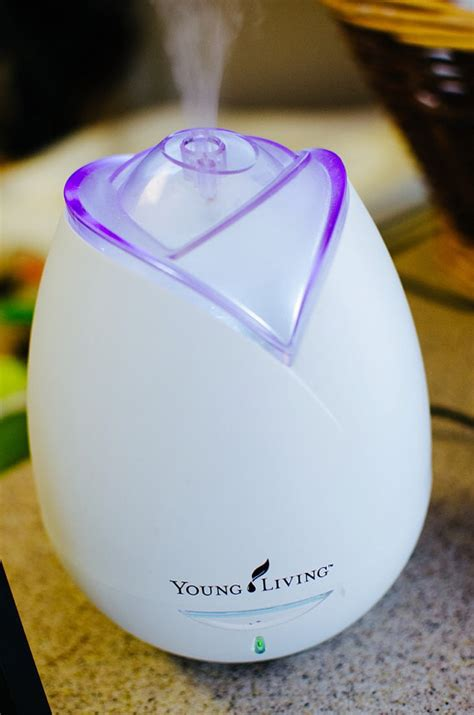 living home diffuser by thousandandonenight on etsy
