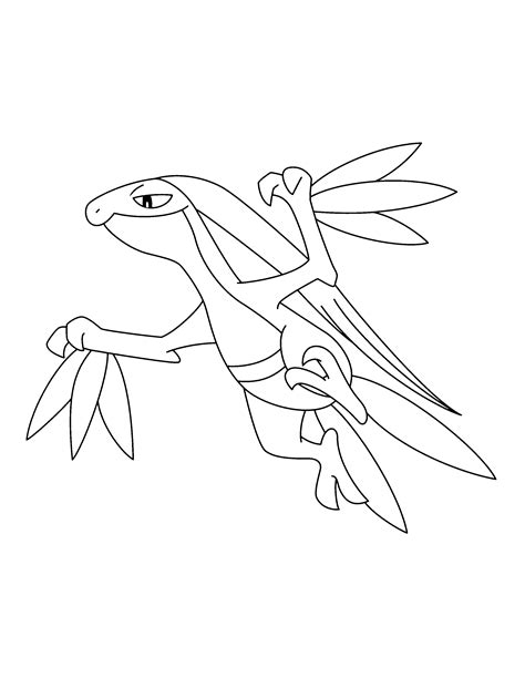 pokemon coloring pages grovyle pokemon mega sceptile coloring pages coloring pages