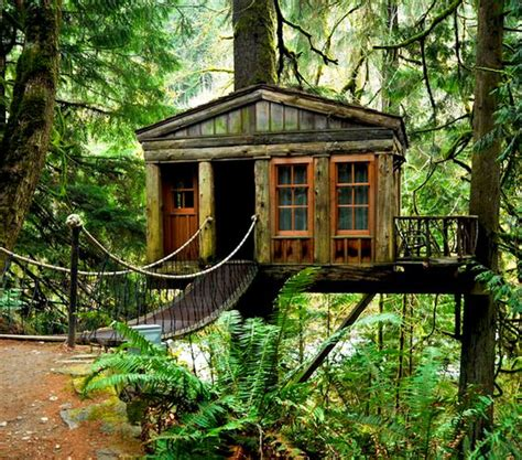 treehouse point issaquah wa architecture pinterest