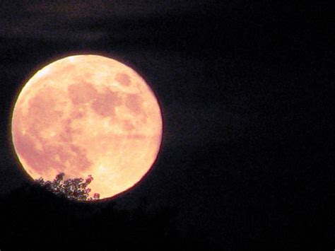 what is a strawberry moon the full strawberry moon of june flickr photo sharing