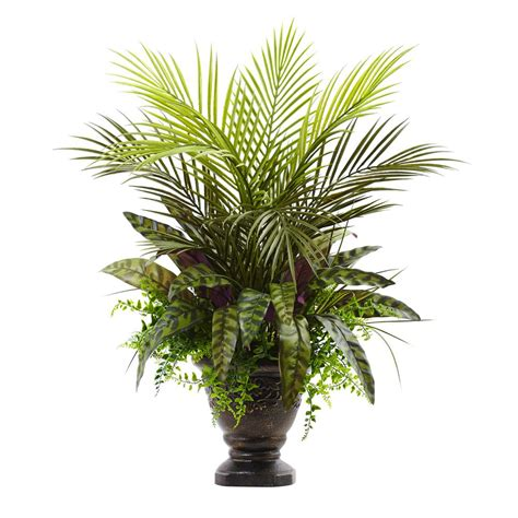 Home Depot Artificial Plants by Nearly Large Boston Fern Hanging Basket 6774 The