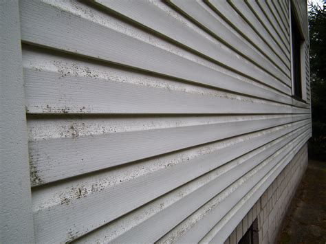 average cost to vinyl side a house cost of siding a house