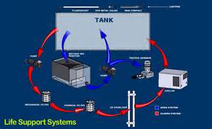 Salt Water Filter Systems For Aquariums, Salt, Free Engine Image For