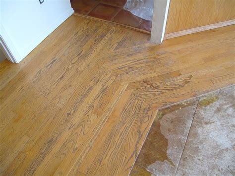 Floor Border by Hardwood Floor Borders