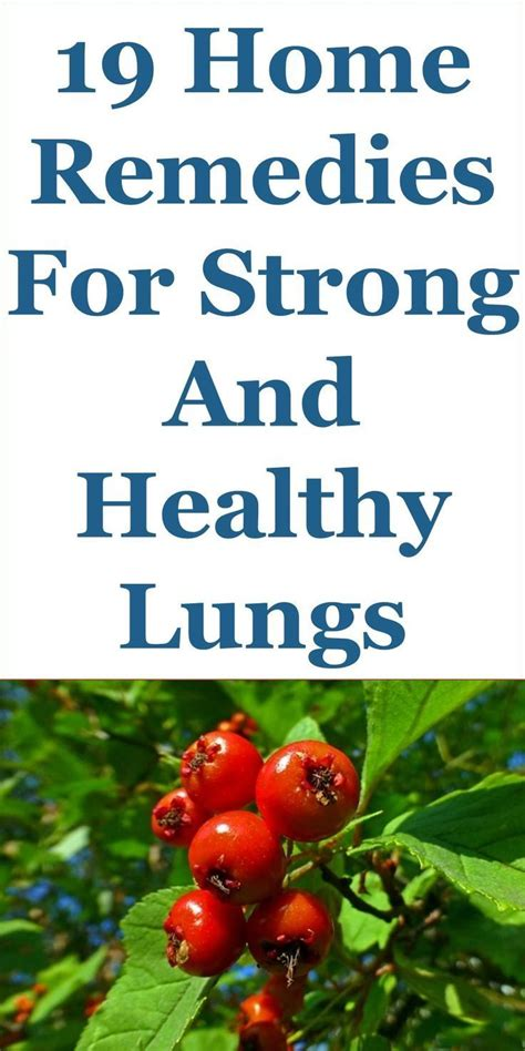 Home Remedies To Detox Lungs by Best 25 Healthy And Unhealthy Food Ideas On