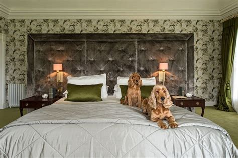 celtic bedroom ideas irish stud farm traditional bedroom dublin by