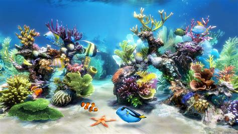 wallpaper aquarium mac sim aquarium virtual aquarium screensaver and live