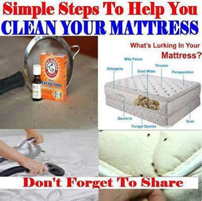 bed bug cleaning what a great inexpensive way to clean your mattress