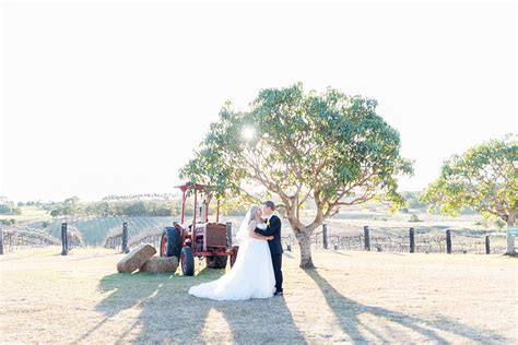 Wedding Venues Vineyards by 9 Of The Most Spectacular Vineyard Wedding Venues