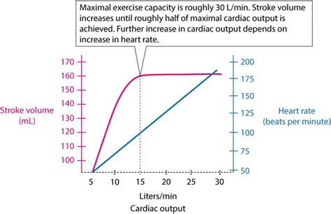 exercise physiology from normal response to myocardial ischemia chest learning
