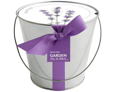 lavender pail  contained grow kit eco friendly