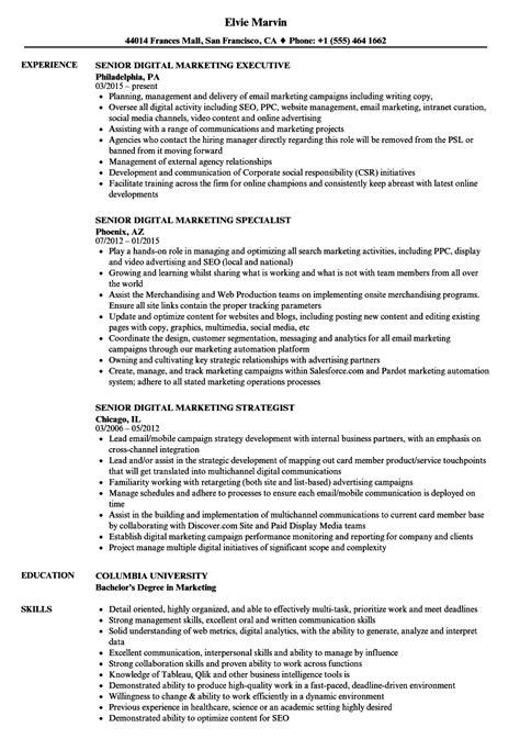 Digital Marketing Resume by Senior Digital Marketing Resume Sles Velvet