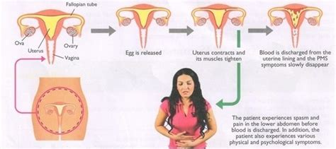 mood swings menstruation 2 answers why do you always have mood swings when you
