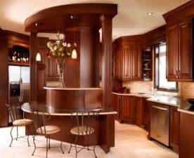 Kitchen Design Pictures Dark Cabinets cabinets for kitchen dark brown kitchen cabinets pictures