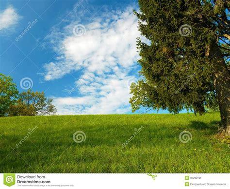 imagenes naturaleza relajante paisaje relajante de la naturaleza imagen de archivo