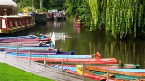 row boat hire guildford rowing boat hire farncombe boat house