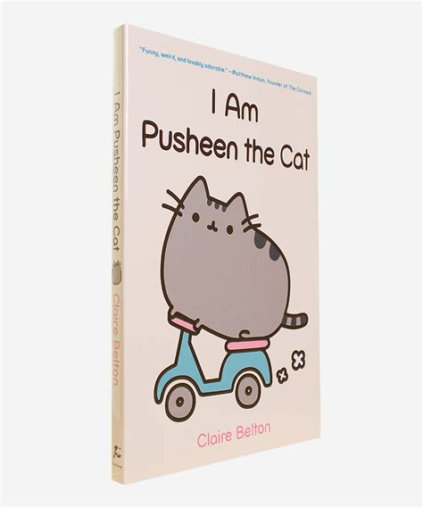am i a books i am pusheen the cat hey chickadee