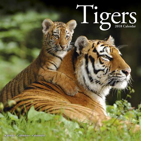 tigers calendar 2018 pet prints inc