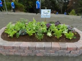 Sensory Garden Ideas Sensory Taste Garden Sensory Garden Ideas Pinterest Sensory Garden Garden Ideas And Gardens