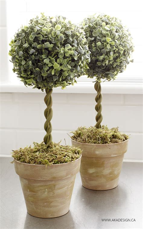 topiary diy diy topiary trees from dollar store supplies