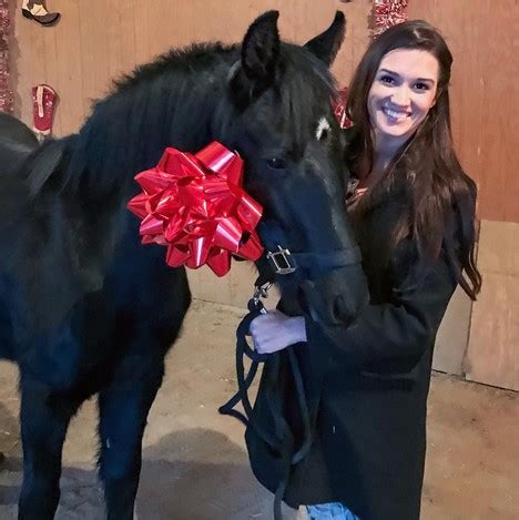 tuesday video: adorable christmas pony surprise | horse nation