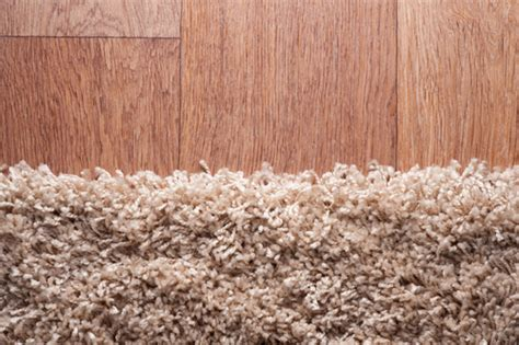 mildew smell in rug how to remove musty smell from rug