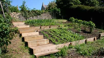 terraced vegetable garden design gardening