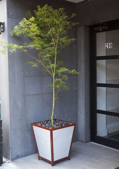 corrugated metal planters galvanized corrugated metal self watering planters so