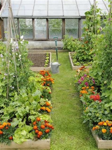 vegetable and flower garden summer garden with mixed vegetables and flowers growing in