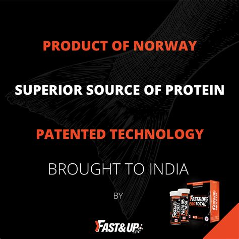 best whey protein for best whey protein supplement in india high protein