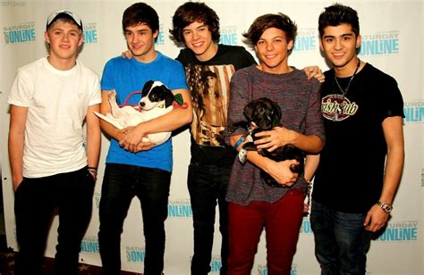 one direction hd wallpaper one direction puppies hd wallpaper hd wallpaper of