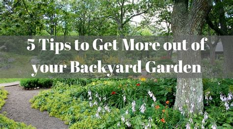 tips to choose small yard in 2017 on yard design ideas 5 tips to get more out of your backyard garden nourish