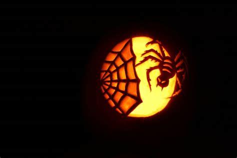 pumpkin carving pumpkins pinterest spider pumpkin
