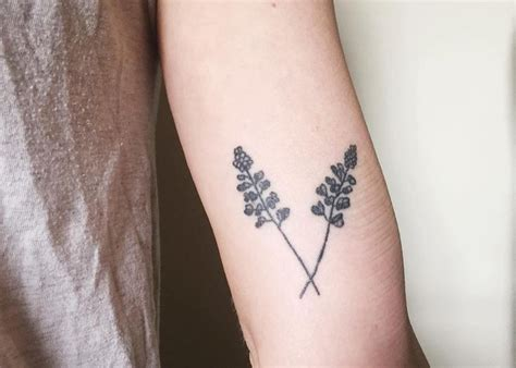bluebonnet tattoo best 25 bluebonnet ideas on lilac
