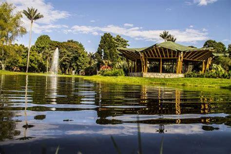 entrada jardin botanico bogota bodas jardin botanico bogota